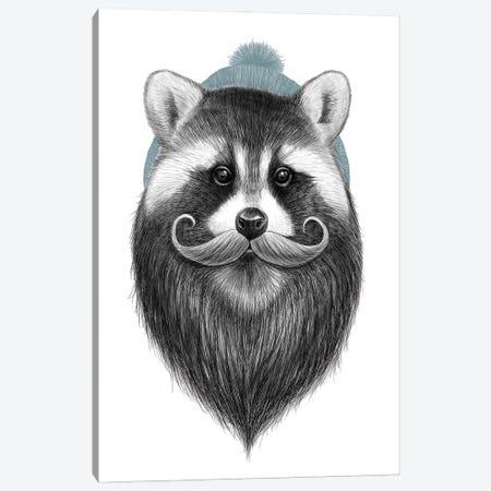 Bearded Raccoon Canvas Print #NKV18} by Nikita Korenkov Canvas Artwork