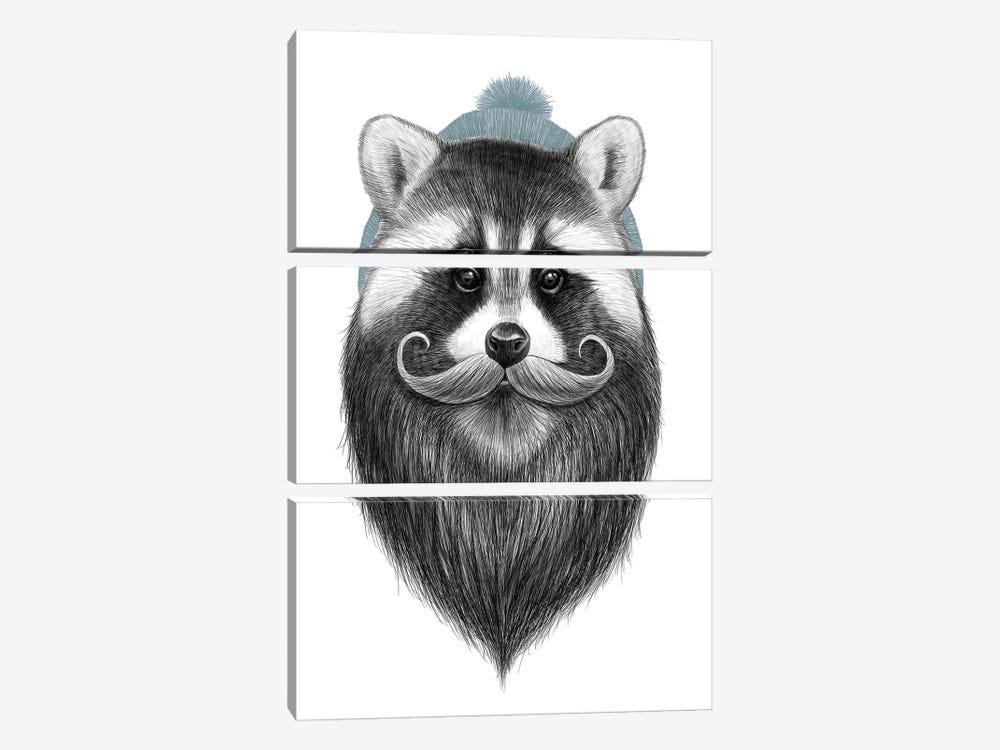 Bearded Raccoon by Nikita Korenkov 3-piece Canvas Art