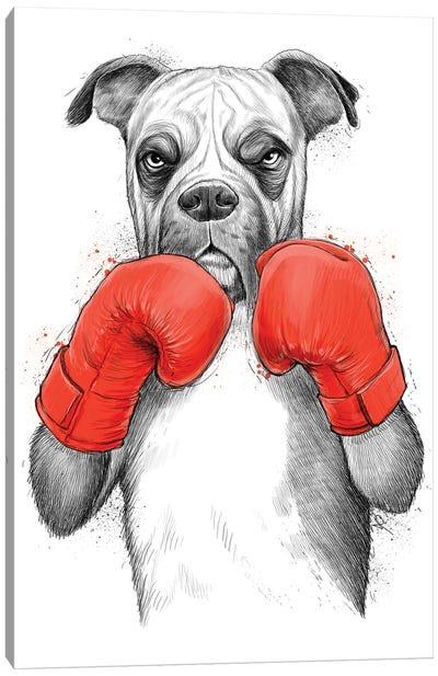 Boxer Canvas Art Print