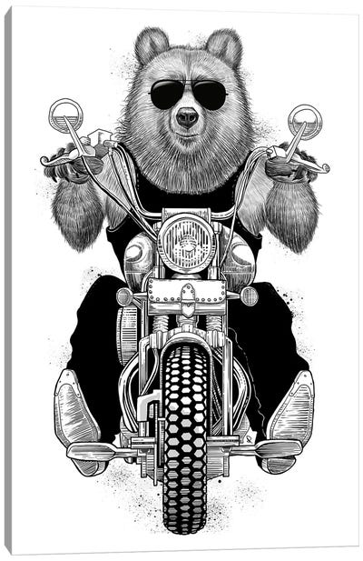 Carefree Bear Canvas Art Print