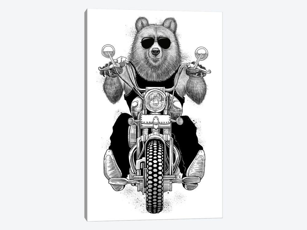Carefree Bear by Nikita Korenkov 1-piece Canvas Print