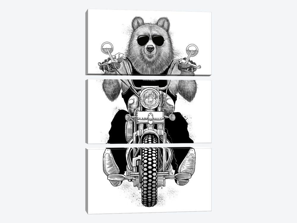 Carefree Bear by Nikita Korenkov 3-piece Canvas Print