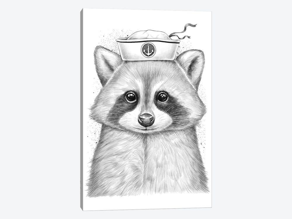 Raccoon Sailor by Nikita Korenkov 1-piece Canvas Wall Art