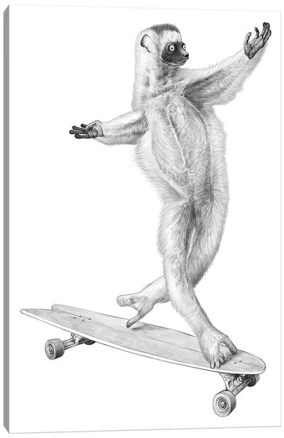 Lemur On The Board Canvas Art Print