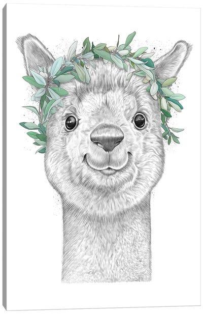 Alpaca With Wreath Canvas Art Print