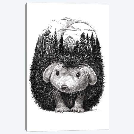 Forest Hedgehog Canvas Print #NKV76} by Nikita Korenkov Canvas Art Print