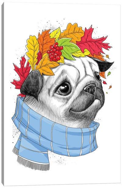 Autumn Pug Canvas Art Print