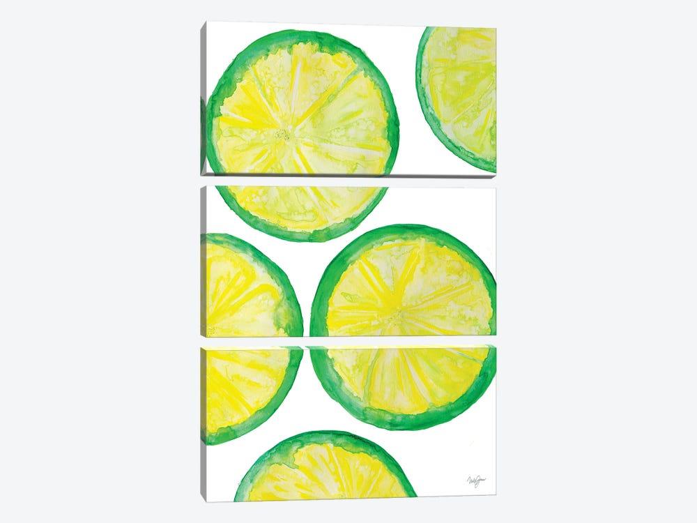 Fruit Punch II by Nola James 3-piece Canvas Print