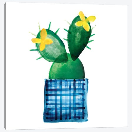 Colorful Cactus VIII Canvas Print #NLI10} by Northern Lights Canvas Artwork