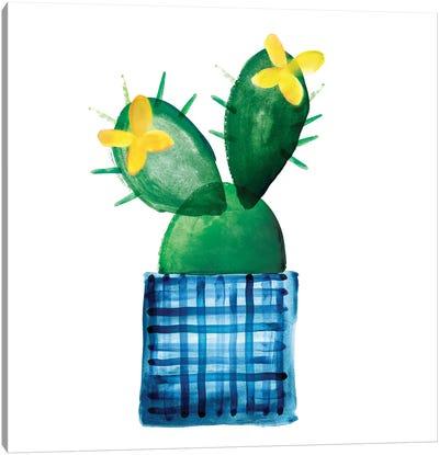 Colorful Cactus VIII Canvas Art Print