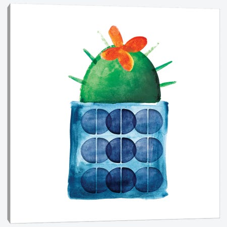 Colorful Cactus IX Canvas Print #NLI11} by Northern Lights Canvas Art