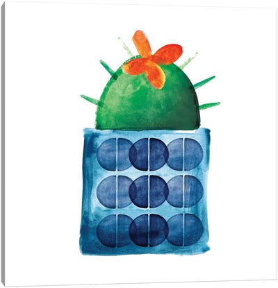 Colorful Cactus IX Canvas Art Print