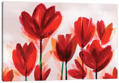 Contemporary Poppies Red Canvas Art Print