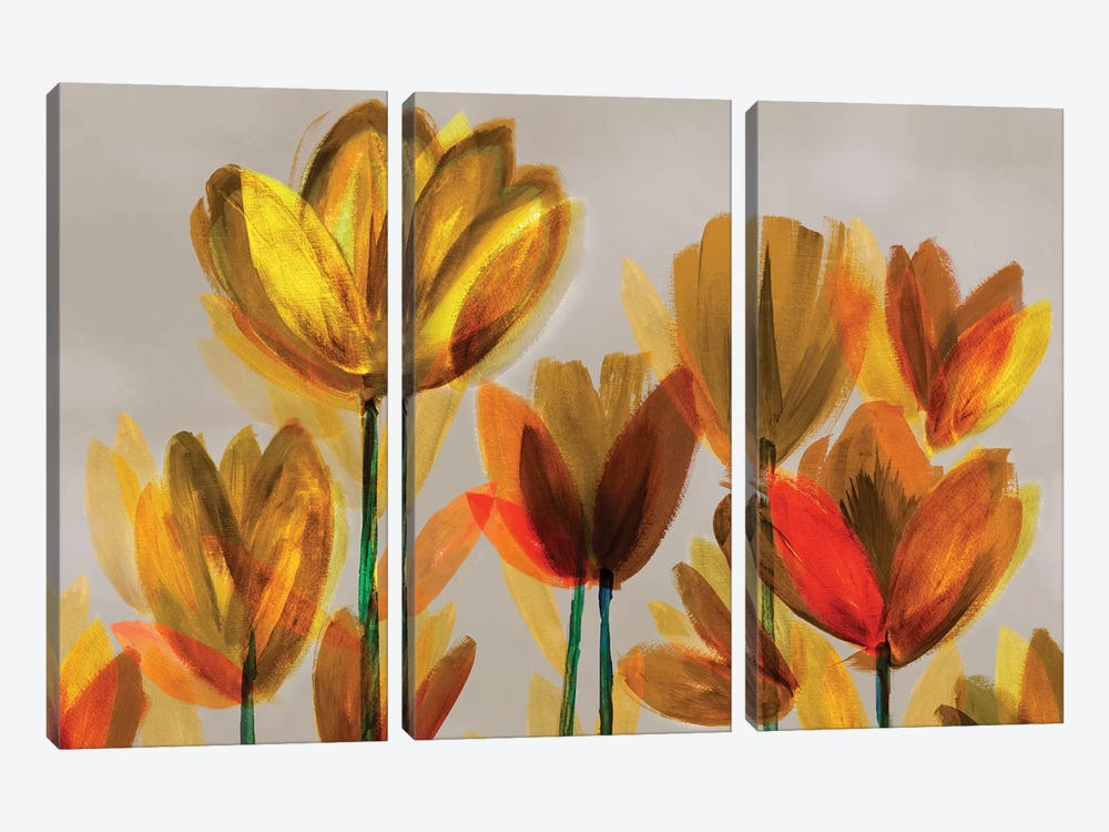 Contemporary Poppies Yellow by Northern Lights 3-piece Canvas Art