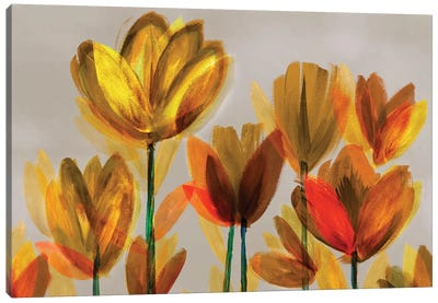 Contemporary Poppies Yellow Canvas Art Print