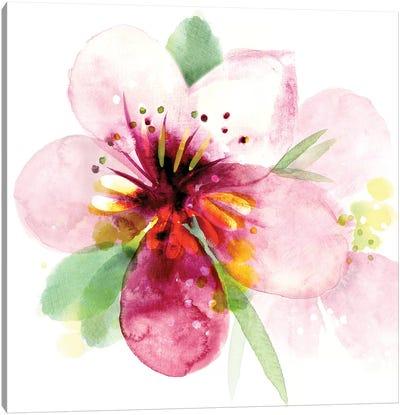 Floral Beauty I Canvas Art Print