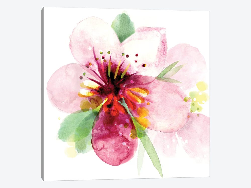 Floral Beauty I by Northern Lights 1-piece Canvas Art Print