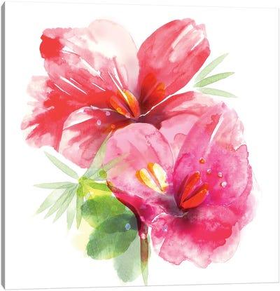 Floral Beauty II Canvas Art Print