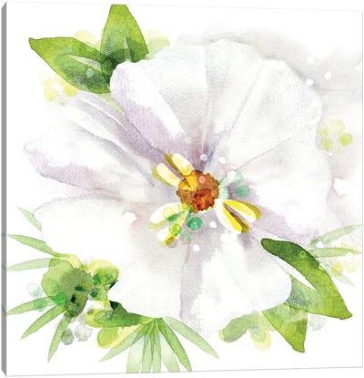 Floral Beauty III Canvas Art Print