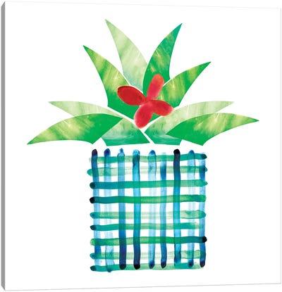 Colorful Cactus III Canvas Art Print
