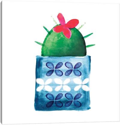Colorful Cactus IV Canvas Art Print