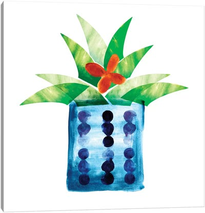 Colorful Cactus VII Canvas Art Print