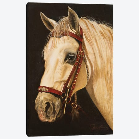 Horse Canvas Print #NLY2} by Nelly Arenas Canvas Art