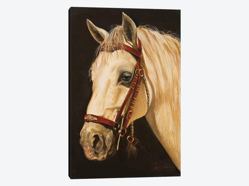 Horse by Nelly Arenas 1-piece Canvas Art Print