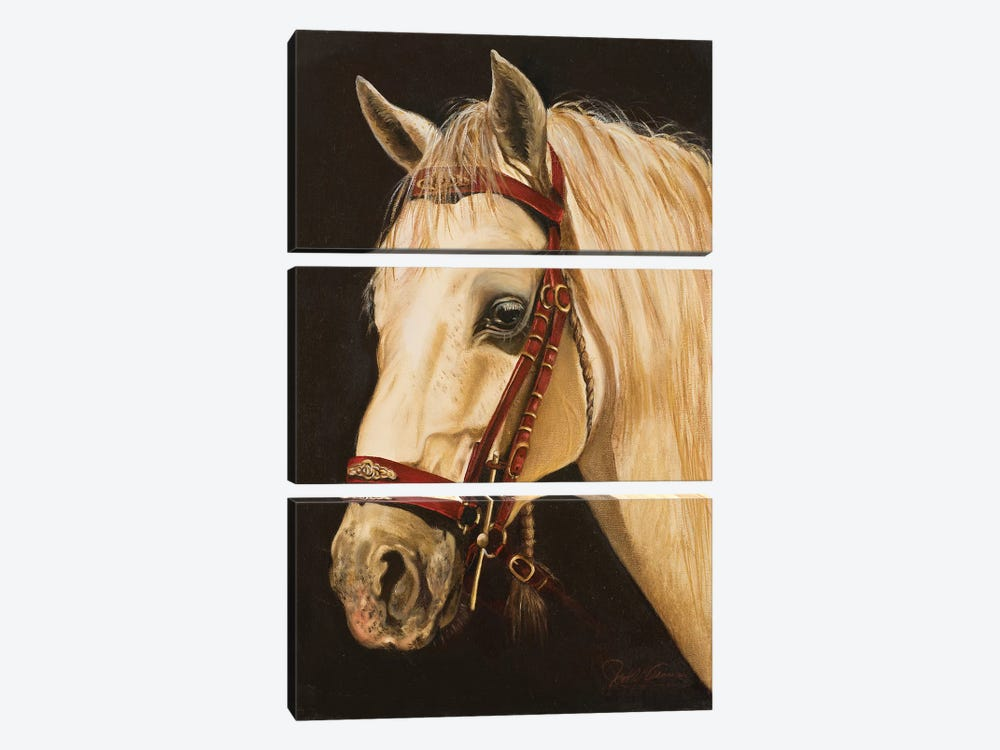 Horse by Nelly Arenas 3-piece Art Print
