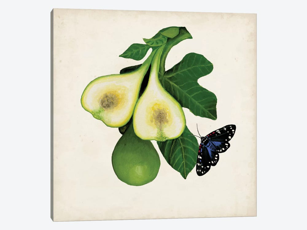 Fruit With Butterflies III by Naomi McCavitt 1-piece Art Print