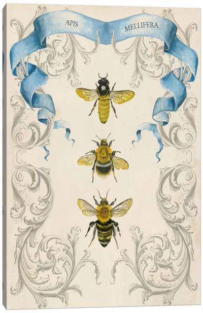 Bees & Filigree II Canvas Print #NMC10