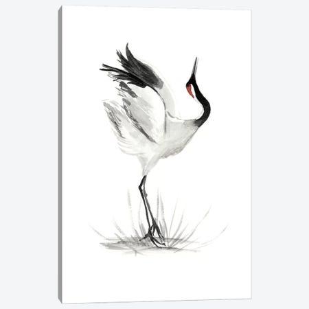 Japanese Cranes I Canvas Print #NMC112} by Naomi McCavitt Canvas Art