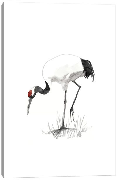 Japanese Cranes II Canvas Art Print