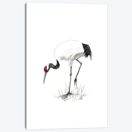 Japanese Cranes II Canvas Print #NMC113} by Naomi McCavitt Canvas Wall Art