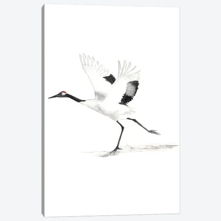 Japanese Cranes III Canvas Print #NMC114} by Naomi McCavitt Canvas Print