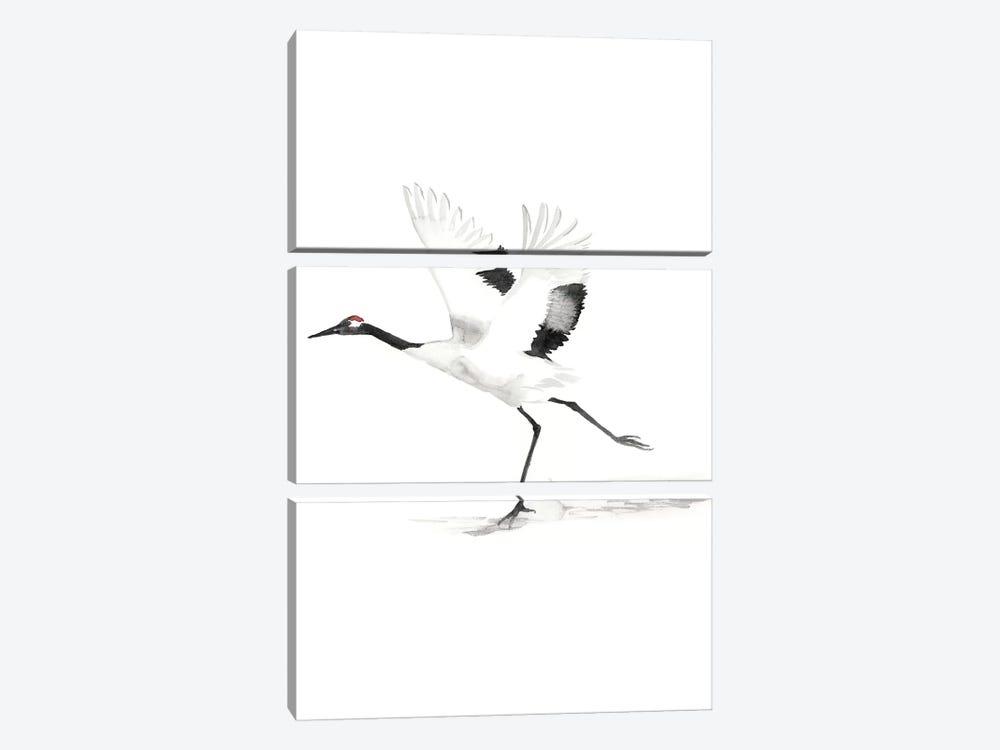 Japanese Cranes III by Naomi McCavitt 3-piece Canvas Wall Art