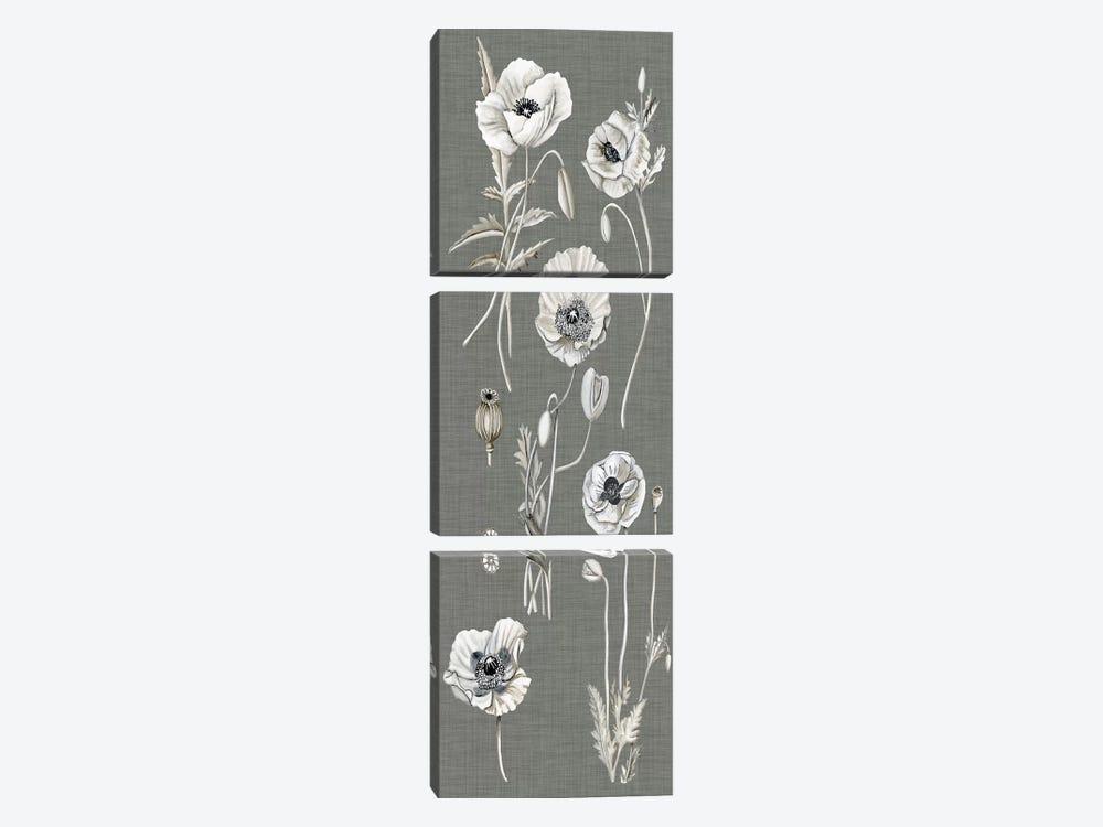 Poppy Array I by Naomi McCavitt 3-piece Canvas Artwork