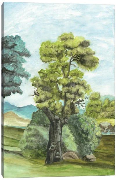 Scenic French Wallpaper II Canvas Print #NMC121