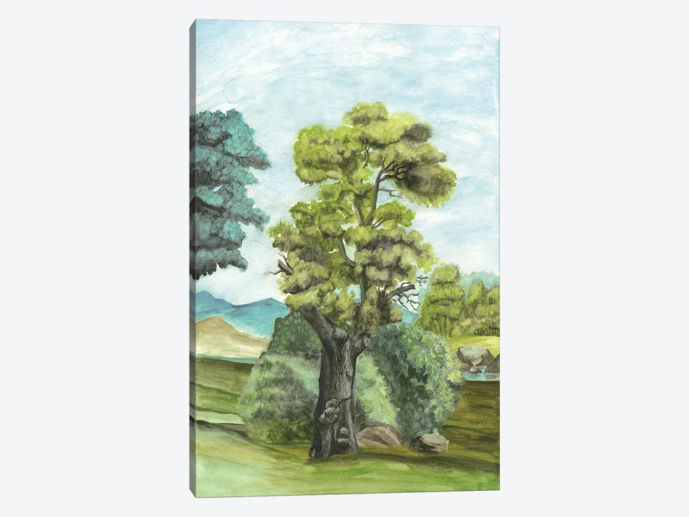 Scenic French Wallpaper II by Naomi McCavitt 1-piece Canvas Wall Art