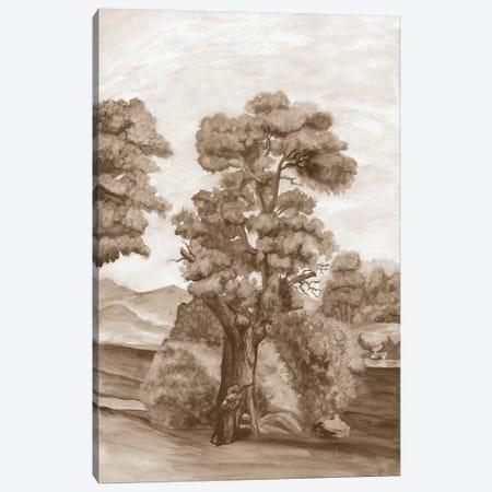 Sepia French Wall Paper II Canvas Print #NMC126} by Naomi McCavitt Canvas Art