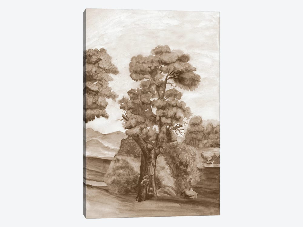 Sepia French Wall Paper II by Naomi McCavitt 1-piece Canvas Art Print