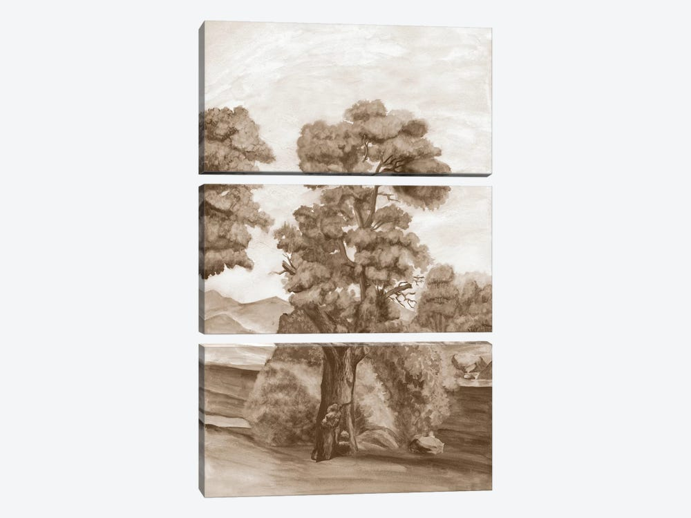 Sepia French Wall Paper II by Naomi McCavitt 3-piece Canvas Print