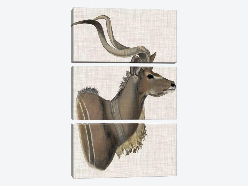 Savanna Impressions IV by Naomi McCavitt 3-piece Art Print