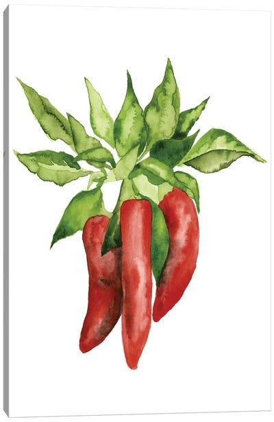 Watercolor Veggie II Canvas Art Print