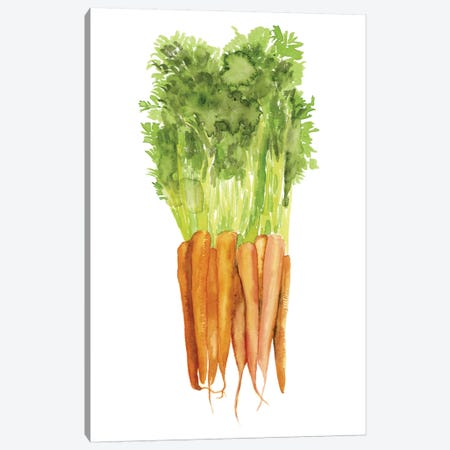 Watercolor Veggie III Canvas Print #NMC155} by Naomi McCavitt Art Print