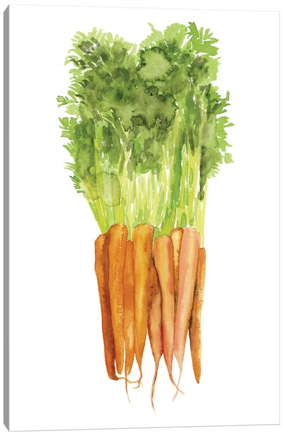 Watercolor Veggie III Canvas Art Print