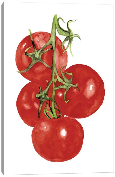 Watercolor Veggie IV Canvas Art Print