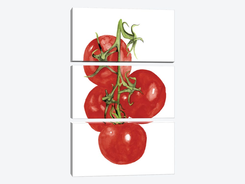 Watercolor Veggie IV 3-piece Canvas Wall Art