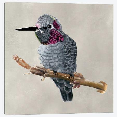 Winged Beauty IV Canvas Print #NMC158} by Naomi McCavitt Canvas Artwork