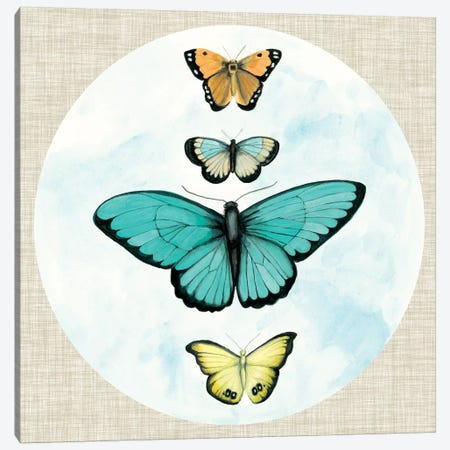 Butterfly Daydream I Canvas Print #NMC172} by Naomi McCavitt Canvas Wall Art